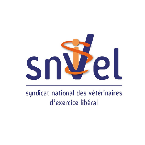 Logo - SNVEL