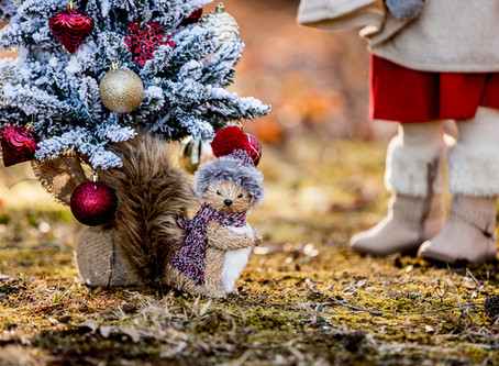 Just Because | It's 20 More Sleeps till Christmas! | Annapolis, Maryland Photographer