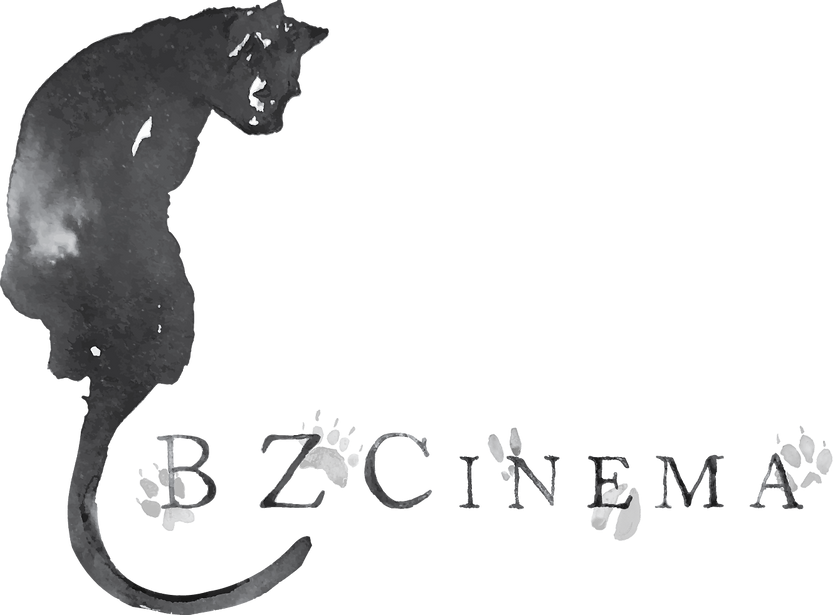 BZCinema_Primary Logo_Gray.png