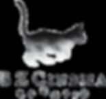 BZCinema Logo