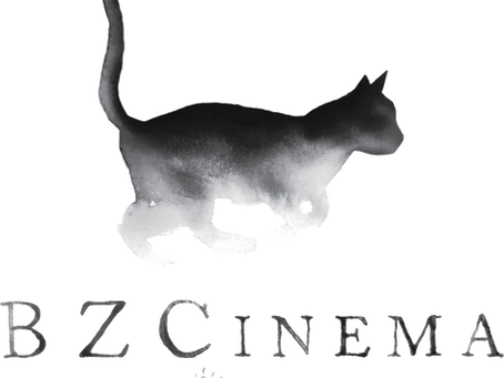 BZCinema | The Purrfect Logo! | Annapolis, Maryland Videographer