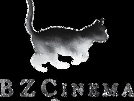 BZCinema | The Purrfect Logo! | Annapolis, Maryland Videographer