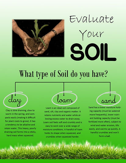 Soil Type Evaluation.jpg