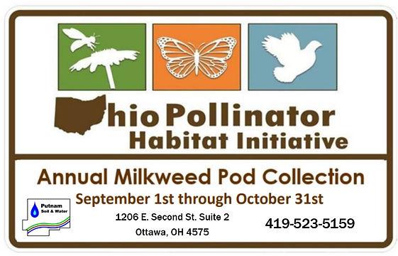 Milkweed Pod Collection.jpg
