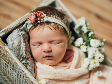 Eleanor | Spring Branch | In-home newborn session