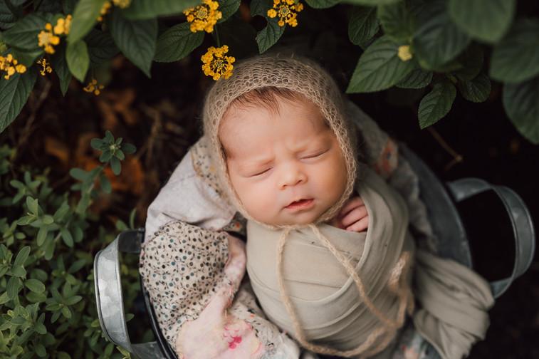 Katy_newborn_photographer-1-2.jpg