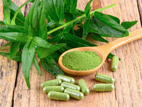 6 homegrown herbs that help fight COVID-19