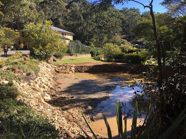 Vegetation Management & Dam Restoration