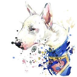 Arte Bull Terrier