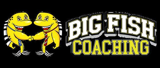 Big Fish Coaching Vault.png
