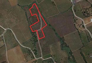 mappa satellite.JPG