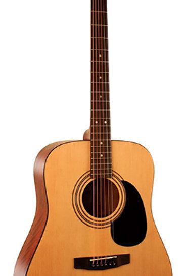 Parkwood W81-OP Акустическая гитара
