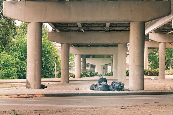 Homeless Person Under the Bridge.jpg