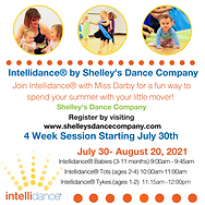 NEW - All Intellidance Classes.png