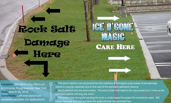 salt image 2.png