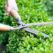 Gartenpflege 1.jpg