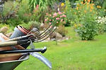 Gartenpflege 2.jpg