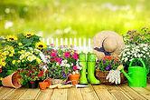 Pflanzenverkauf.jpg