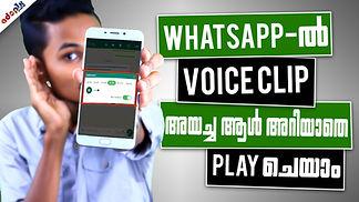 whatsapp Voice clipTHM .jpg