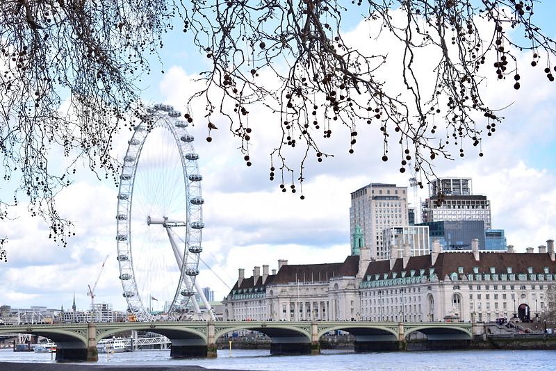 View of the London Eye (London, England)