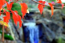landscape design boise, waterfall