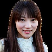 Lydia Hsiao-Mei Lin