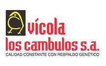 LogoAvicambulos_new.png