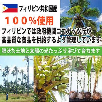 ココナッツシロップ2.jpg
