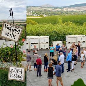 Harvest Party 2019 Vineyard Walk