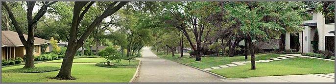 Street2.jpg
