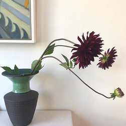 Dahlia in an _annhitchcox vase with _lot