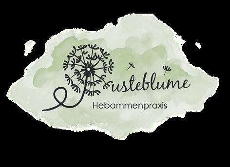 PB_Logo_Hebammenpraxis-550x400.png