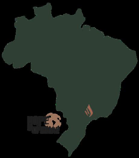 Brazil - instant alpha - transparent.png
