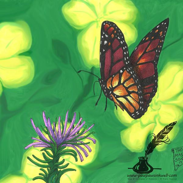 Butterfly Watermark.jpg