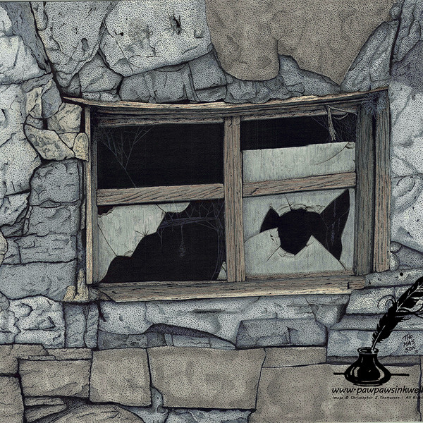 Broken Window Watermark.jpg