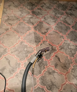 Rug during clean