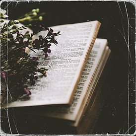 I Wait For The Lord Bible Psalm 130;5 -