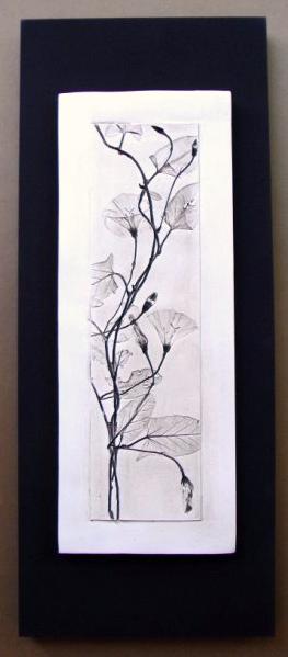cuadro vegetal