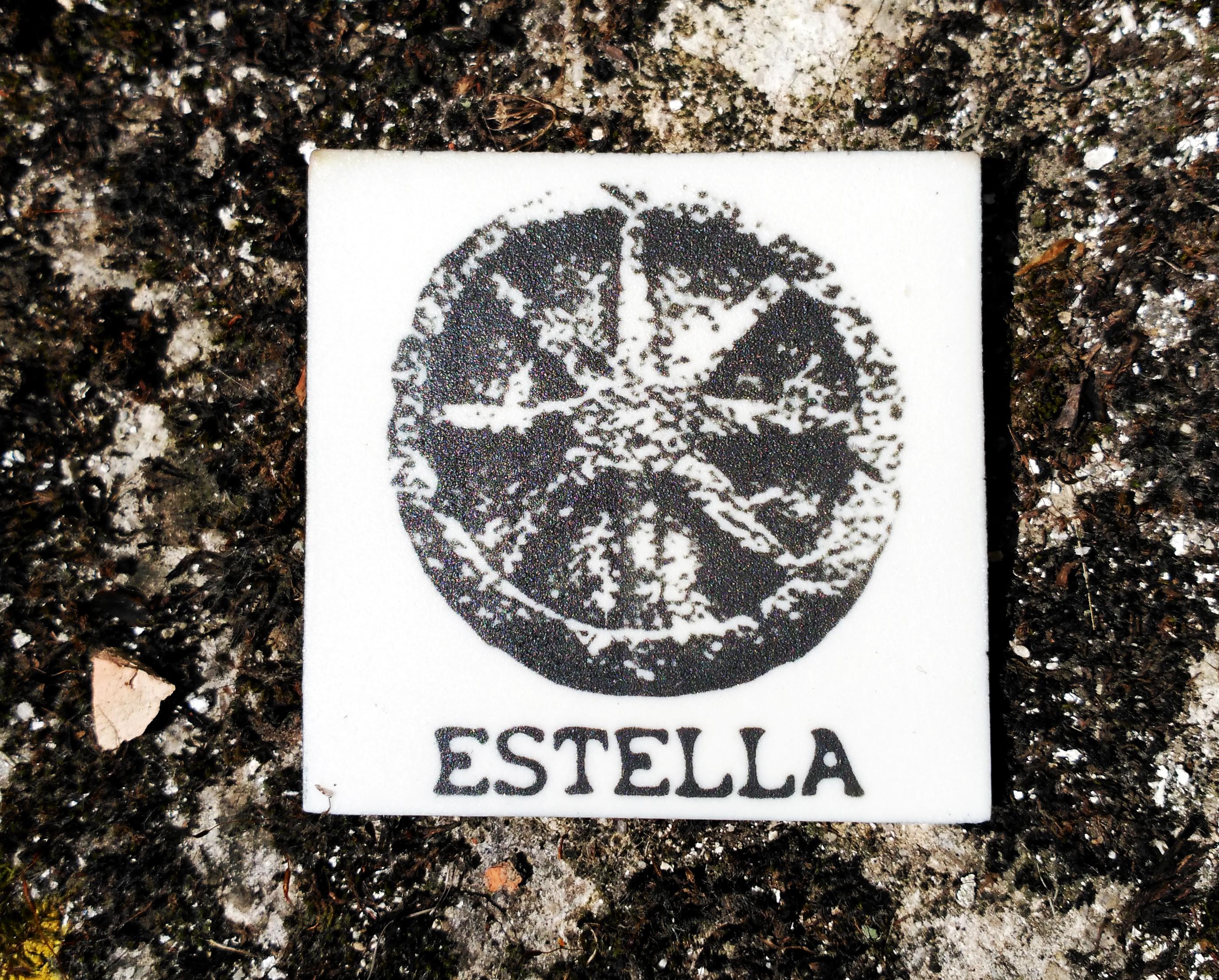 imán Estella-Lizarra