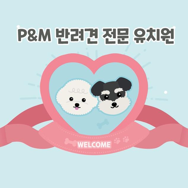 P&M 반려견 전문 유치원