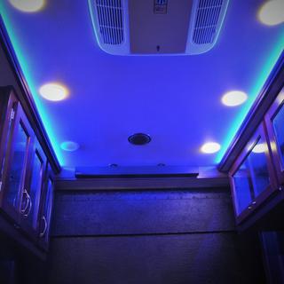 LIGHTSINSISIDE.png