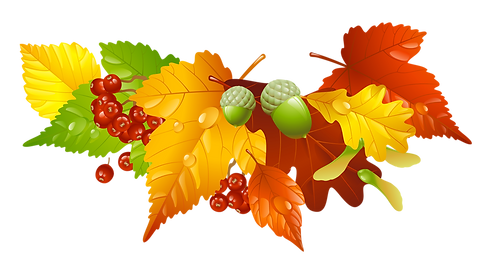 autumn-leaves-clip-art-37.png