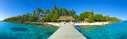 3) Fiji