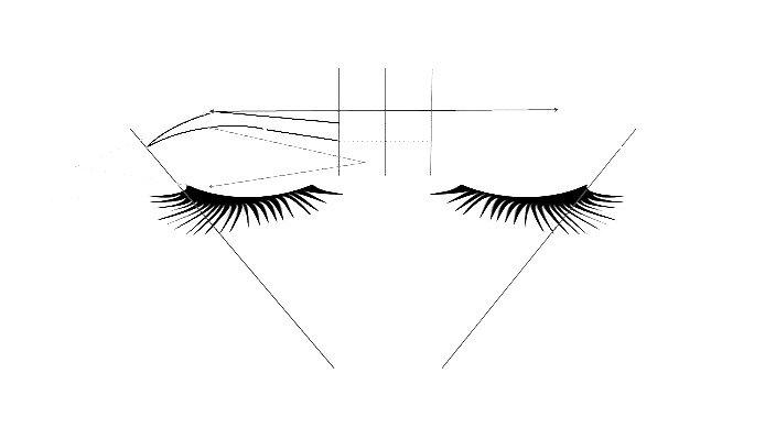 Symmetry & Brows Design Technique