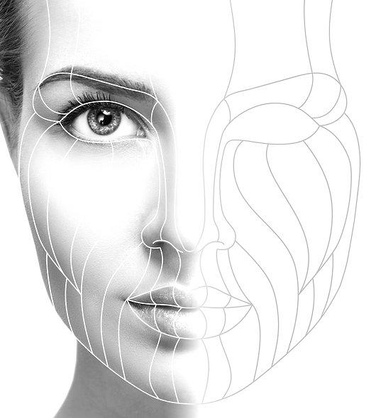 Skin Structure & Permanent Makeup Fundamentals