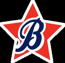 Boosterthon Logo.png