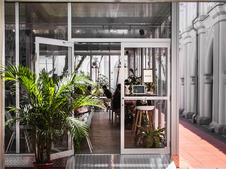 The Glasshouse: An oasis
