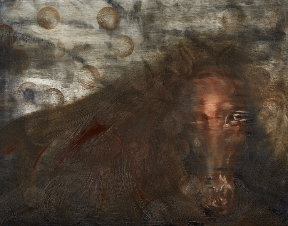 Dreams-13_Horse.psd.jpg