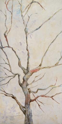 Nature-9_White tree.psd.jpg