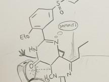 Evolution of a Sketch Chemistry Cartoon